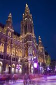 vienna city-hall and scating in winter