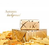 Gift Box In Gold Wrapping Paper With Autumn Leaves On White Isolated Background