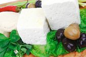 dairy food : feta white cheese cubes and round served on wooden cut plate with green leaves and oliv
