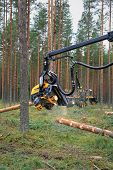 Ponsse Harvester Head Cutting Wood
