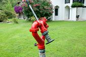 Fire Hydrant In The Garden