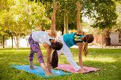 Yoga Girls At A Park
