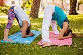Downward Yoga Pose At A Park
