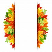 Vector background with colorful autumn leaves. Eps-10.