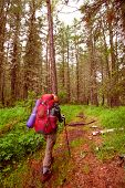 Hiker In Altai Mountains