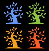 Set of Colorful Season Tree Bold icons