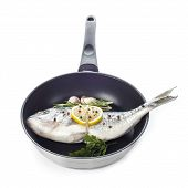 Gilt-head Sea Bream Fish On A Pan Isolated