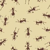 Seamless pattern with cute brown ants on beige background