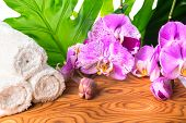 Spa Still Life With Unusual Lilac Orchid Flowers, Phalaenopsis And White Towel On Root Wooden Backgr