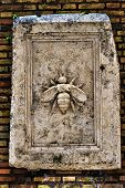 Sculpted bee