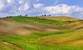 Tuscana landscapes. golden hills of Orcia.