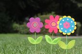 pic of united we stand  - colorful flowers with green leaves stand in green grass of a garden - JPG