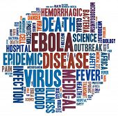 Ebola disease in word collage
