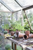 picture of workbench  - Overturned pots on workbench in greenhouse - JPG