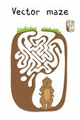 stock photo of marmot  - Vector Maze - JPG