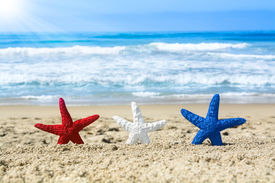 picture of starfish  - Conceptual summer holiday image of three red - JPG