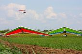 Field, hang gliders and sky