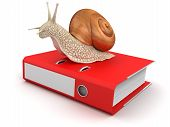 Snail and Document (clipping path included)