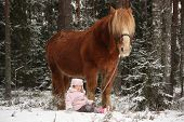 stock photo of horse girl  - Small adorable girl sitting in the snow in forest and big palomino horse standing near