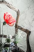 Red Flower, Chair And Wall