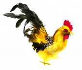 stock photo of black-cock  - A colourful artificial cock as a table decoration  for example at Eastern over white - JPG