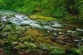Smoky Mountain River