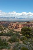 From The Canyon Rim