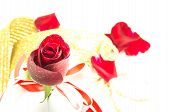 Red Rose On White Background, Valentines Day Background