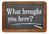 What brought you here? A question on a vintage slate blackboard