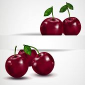 Bright berries ripe cherry with drops, isolated on white.