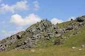Sourton Tor, Dartmoor
