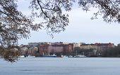 Stockholm View
