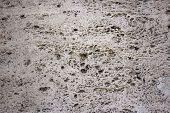 Natural Travertine Stone Background