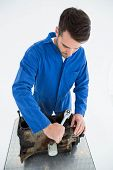 High angle view of young male mechanic repairing car engine on white background