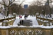 Winter Blizzard In Central Park, New York City