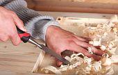 Hands In Wood Work