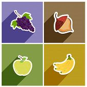 Set of four fruits on colorful chart.
