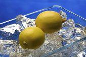 Lemons in studio