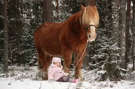 stock photo of big horse  - Small adorable girl sitting in the snow in forest and big palomino horse standing near  - JPG