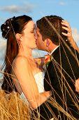 Grass Kisses