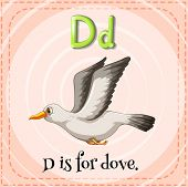 picture of letter d  - Flashcard letter D is for dove - JPG