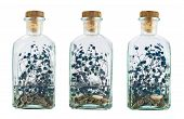 image of infusion  - Glass bottle full of herbs as an infusion or air freshener - JPG