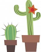 pic of cactus  - Vector illustration of two cactus - JPG
