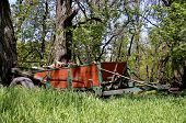 picture of firewood  - An old restored manure spreader is parked in a woods full of chopped and split firewood - JPG