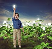foto of lightbulb  - Baby with lightbulb in a ideas field - JPG