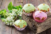 pic of icing  - Homemade cupcakes with colored icing and white lilac on a wooden background in rustic style - JPG