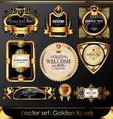 Vector Set: Beautiful Golden Labels