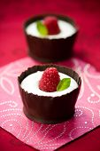 white chocolate mousse dessert served with fresh raspberry and mint in an edible chocolate cup