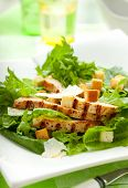 stock photo of caesar salad  - Chicken Caesar salad  on the white plate - JPG