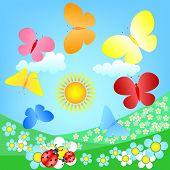 butterflies roundelay